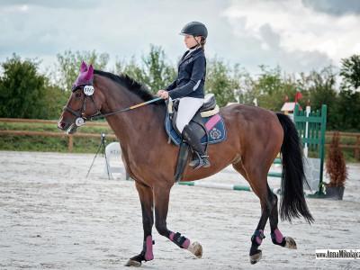 Zawody jeździeckie Wielka Lipa 20.09.2015 fot. Anna Mikołajczyk