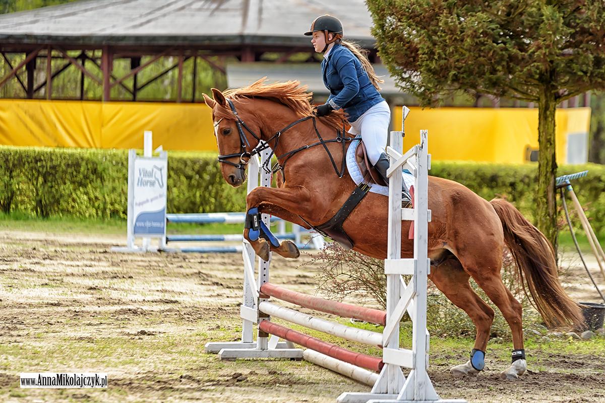 Golędzinów 24.04 Regionalne zawody w skokach przez przeszkody fot. Anna Mikołajczyk